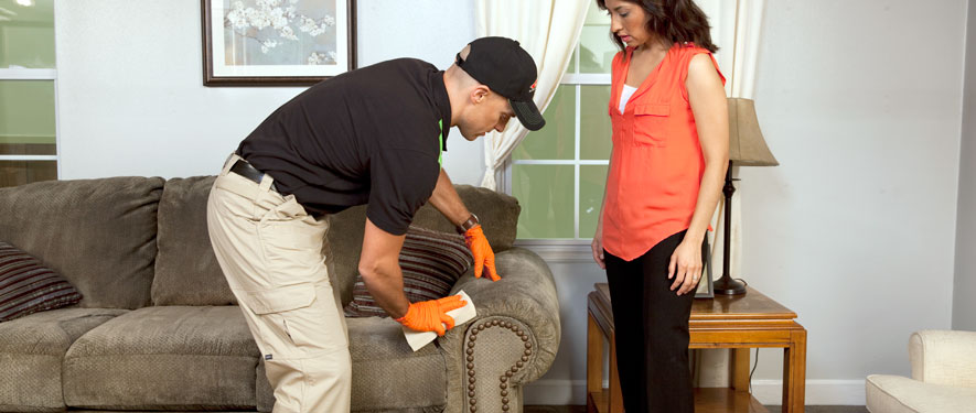 Highland Village, TX carpet upholstery cleaning